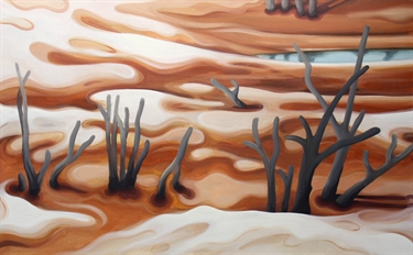 Max Berry - Dry lakebed, 92x61