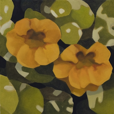 Max Berry - Yellow Flowers, 40x40